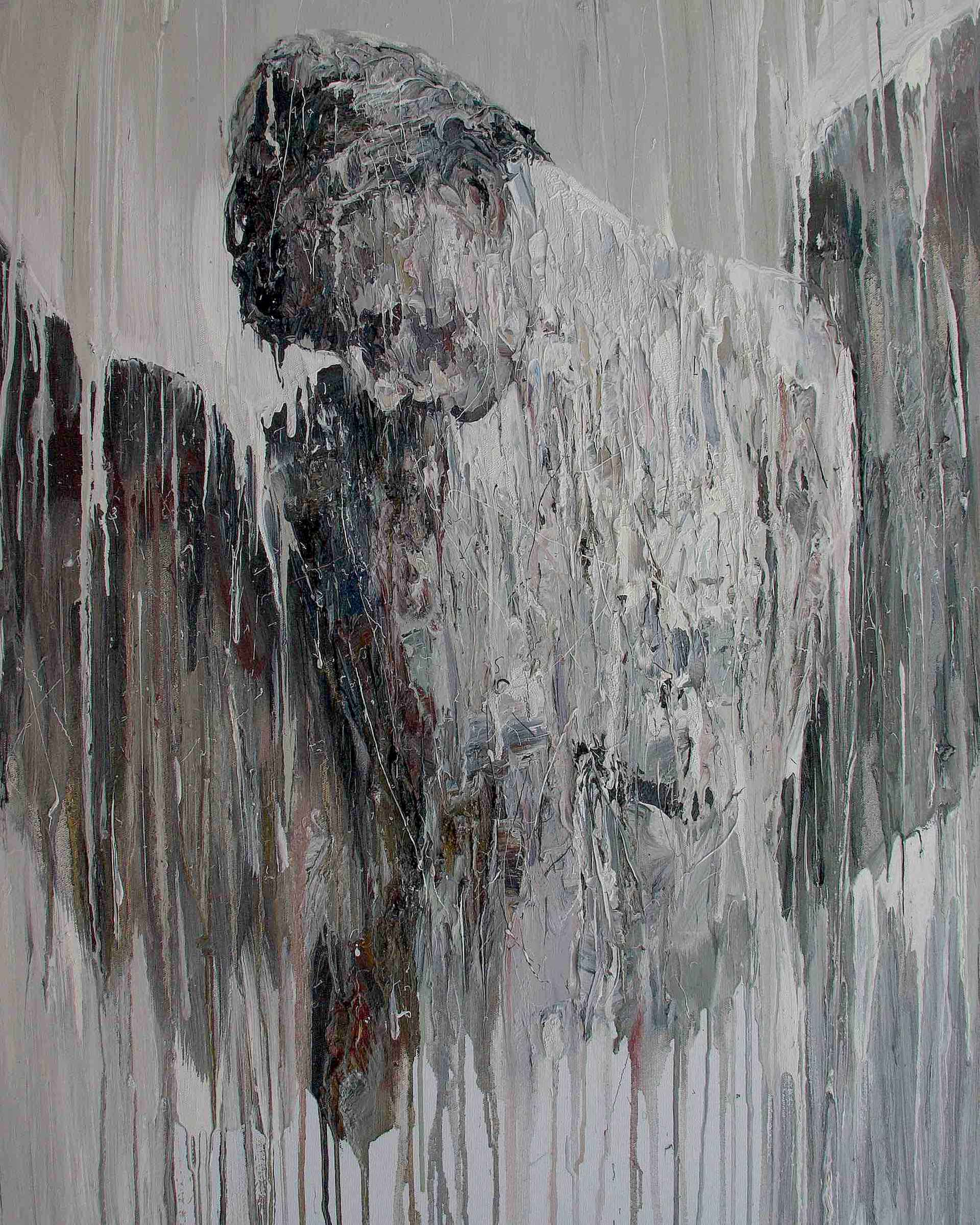 Rufus by Carl Melegari