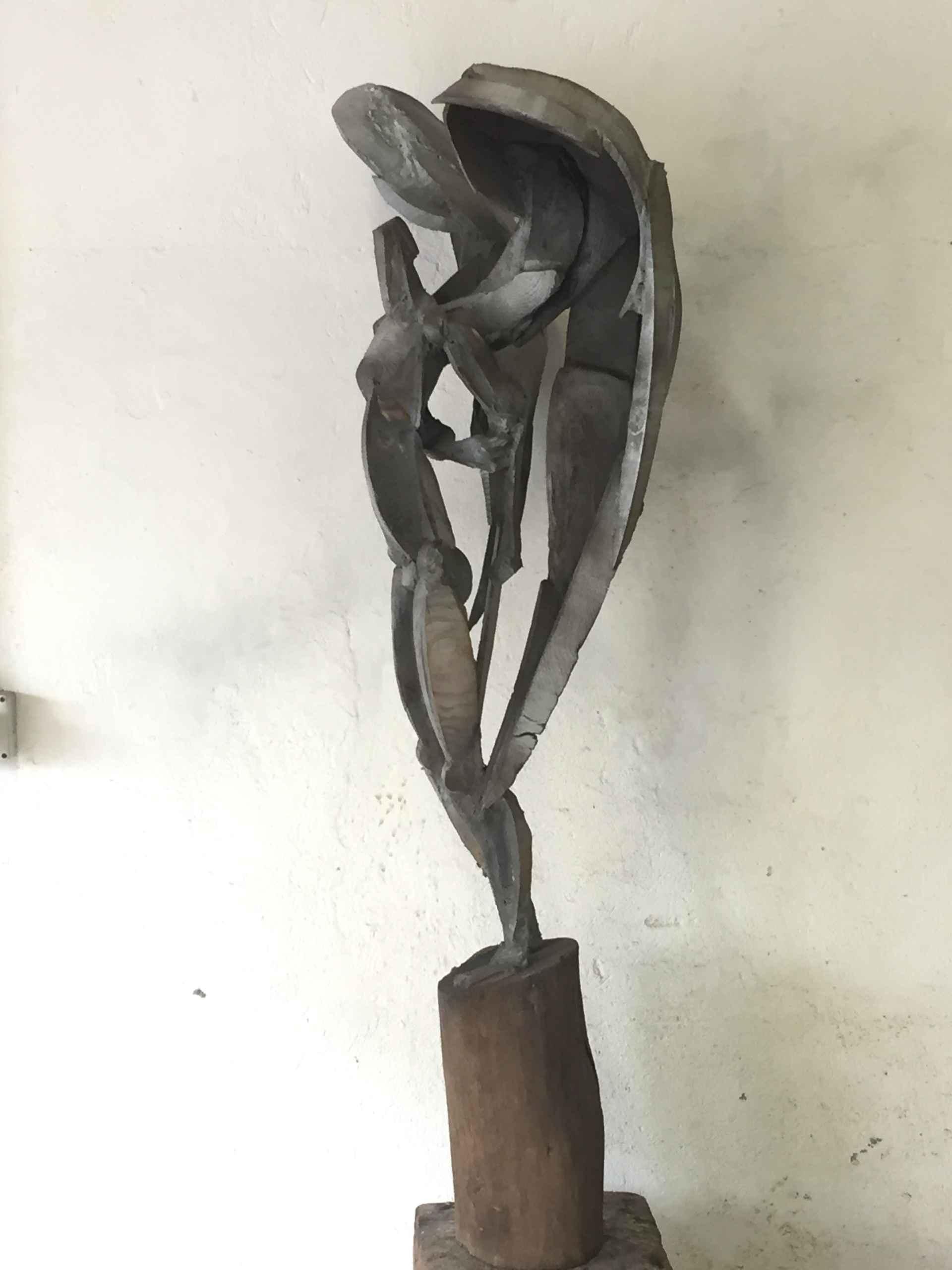 Angel by Sophie Dickens