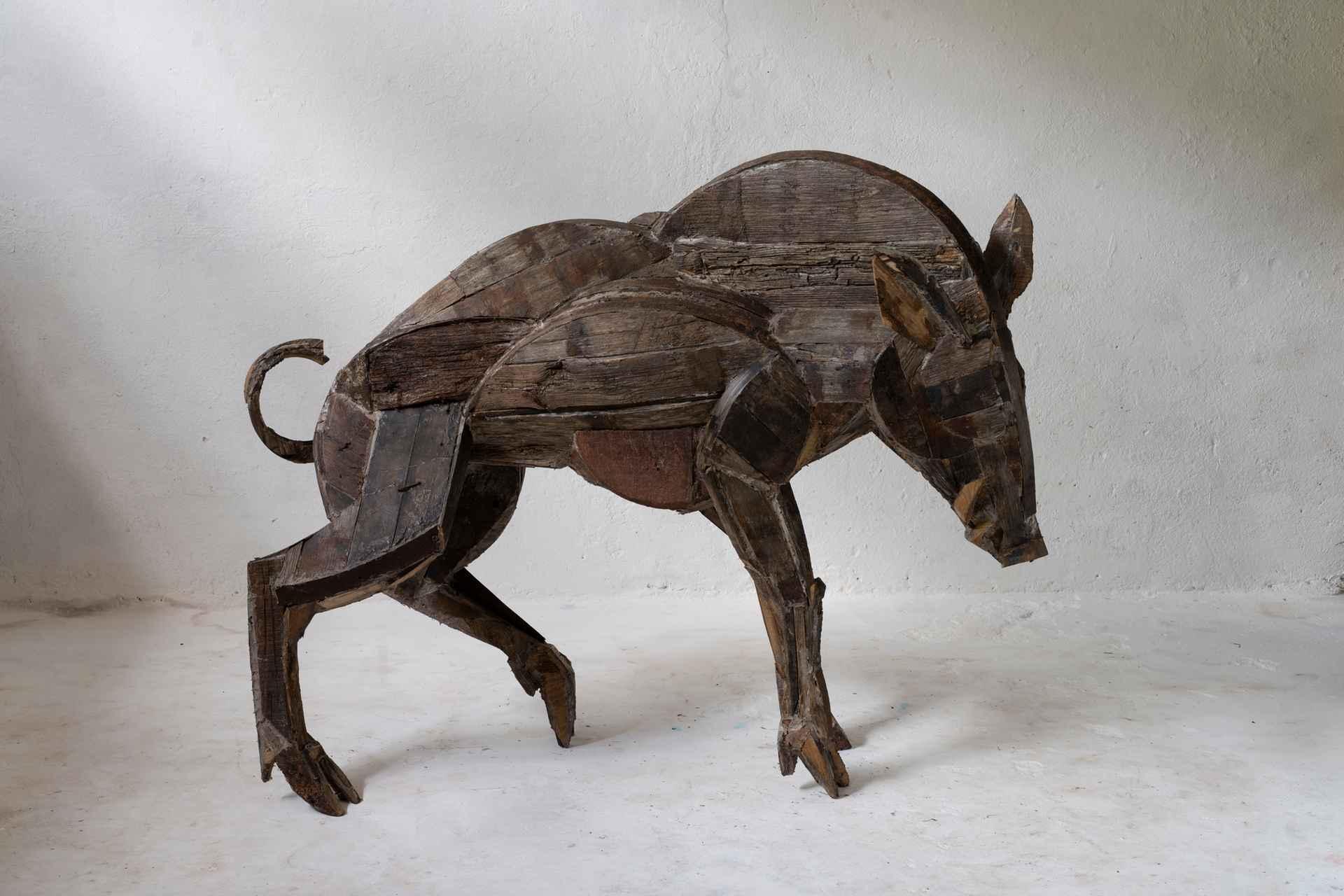 Wild Boar A by Sophie Dickens