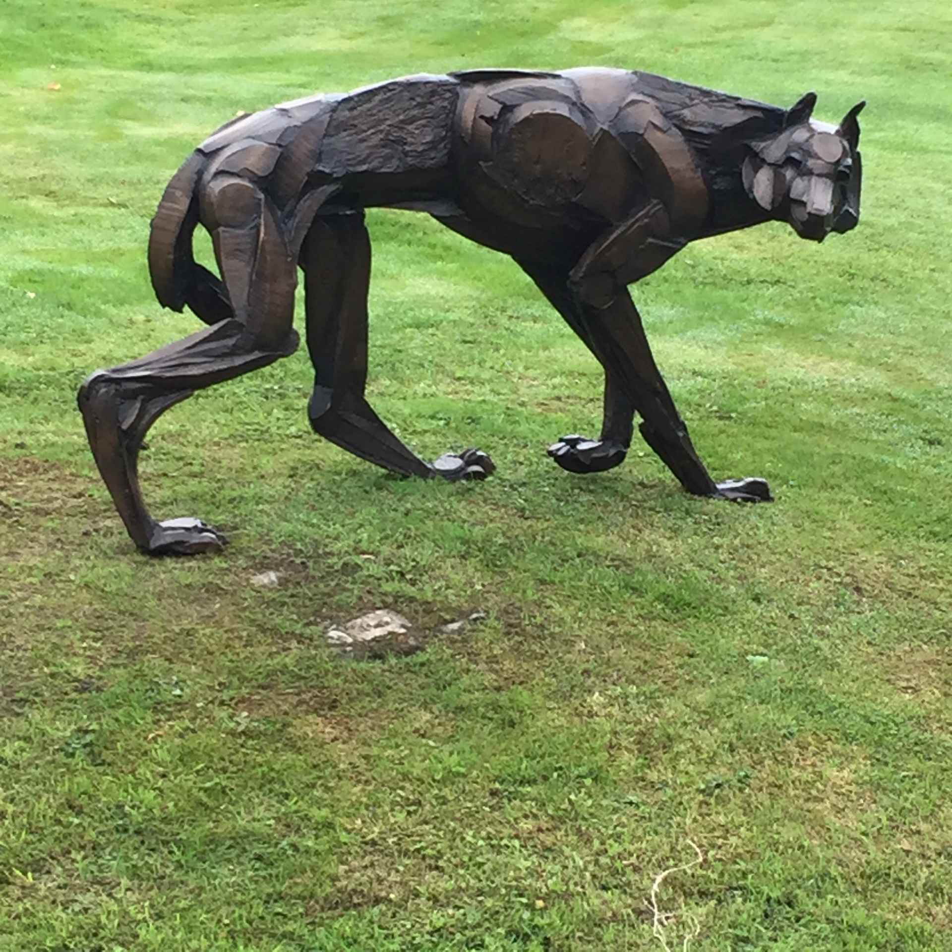 Wolf 5 by Sophie Dickens