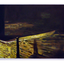 Rear Window 1,2,3 (A Taste of Honey Series) by Chris Acheson