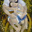 A Vine Affair by Richard Wallace